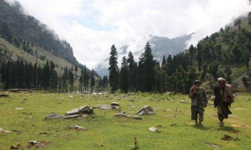 Zdjecie INDIE / Kaszmir / Dolina w okolicy Pahalgam / W g�rach Kaszmi