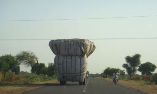 Zdjecie INDIE / brak / Jaisalmer Pustynia Thar / Media M.