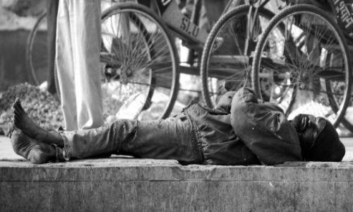 Zdjecie INDIE / brak / Delhi / Odpoczynek