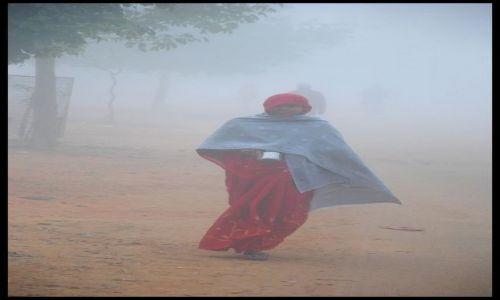 Zdjecie INDIE / Madhya Pradesh / Khajuraho / rankiem we mgle
