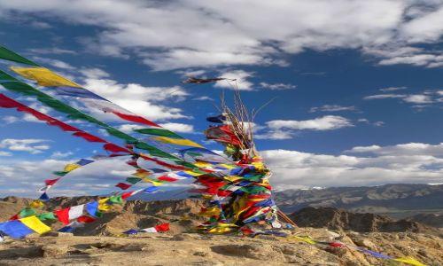 Zdjęcie INDIE / Ladakh / Leh / buddyjskie choragiewki