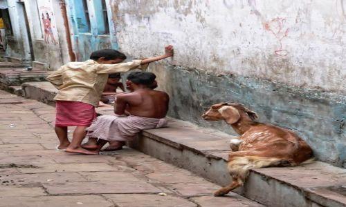 Zdjęcie INDIE / brak / Waranasi / posiedzenie