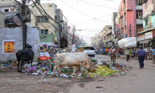 Zdjecie INDIE /  Delhi, Paharganj /  Delhi / w centrum stolicy Indii