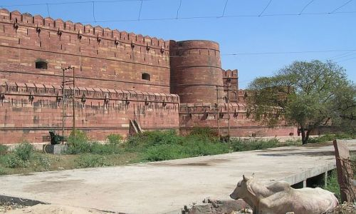 Zdjęcie INDIE / Uttar Pradesh / Agra / Fort 2