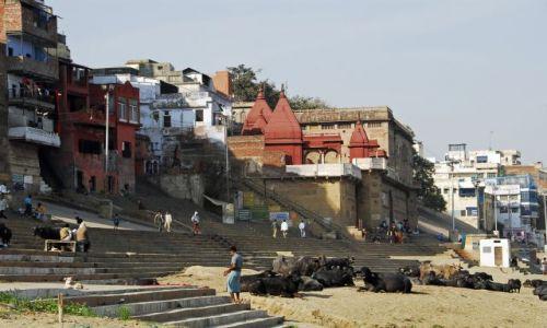Zdjecie INDIE / Central India / Varanasi /  zycie nad Gangesem