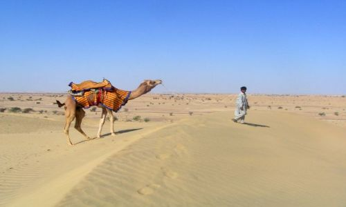 Zdjęcie INDIE / Rajastan / pustynia Thar / na pustyni Thar