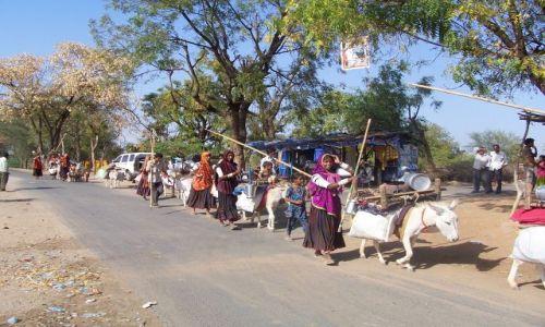 Zdjęcie INDIE / Gujarat / w drodze między Mehsaną a Ahmadabadem / Koczownicze plemię Rabari