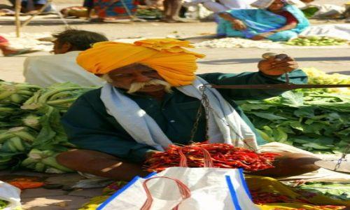 Zdjęcie INDIE / Godra / Godra / WAGA