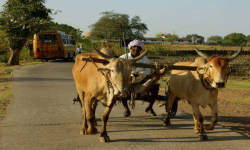 Zdjęcie INDIE / Mandi / Mandi / Wio