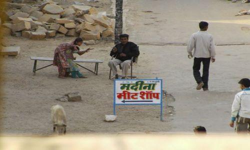 INDIE / Rajasthan / Jaisalmer - pustynia Thar / święta świnka...:-)???