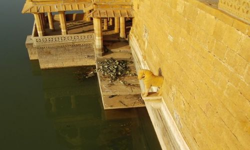 INDIE / Rajasthan / Jaisalmer - pustynia Thar / opuszczone pa�ace