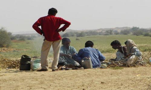 INDIE / Rajasthan / Jaisalmer - pustynia Thar / życie na pustyni, kuchnia polowa