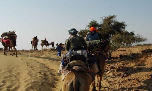 INDIE / Rajasthan / Jaisalmer - pustynia Thar / karawana