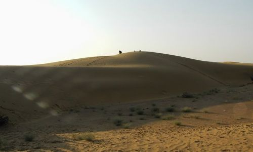 INDIE / Rajasthan / Jaisalmer - pustynia Thar / piaskownica