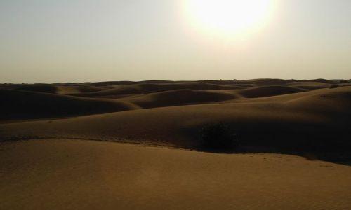 INDIE / Rajasthan / Jaisalmer - pustynia Thar / zachód słońca