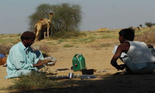 INDIE / Rajasthan / Jaisalmer - pustynia Thar / mycie garów..:-)