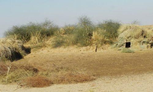 INDIE / Rajasthan / Jaisalmer - pustynia Thar / pustynne chatki