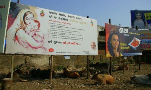 Zdjęcie INDIE / Junagadh / Junagadh / Reklamy