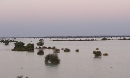 INDIE / Rajasthan / Jaisalmer - pustynia Thar / nad jeziorem