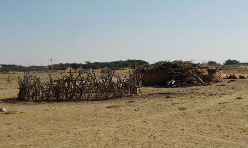 Zdjecie INDIE / Rajasthan / Jaisalmer - pustynia Thar / pustynne zabudowania