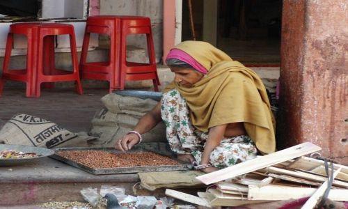 INDIE / Rajasthan / Jaipur / miejscowi, karmiąca gołębie