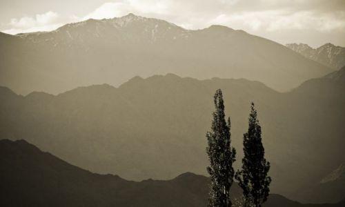 Zdjęcie INDIE / Ladakh / okolice Choglamsar / Dolina Indusu