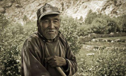 INDIE / Ladakh / Sakti / Stary pasterz