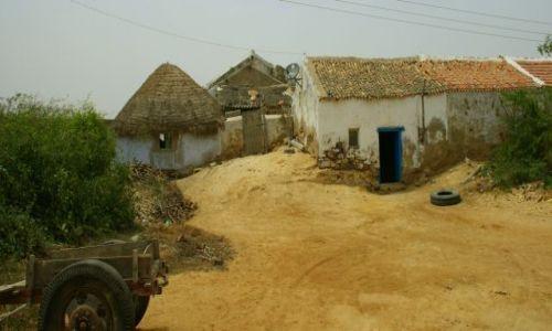Zdjecie INDIE / Than / Than / Pustynna  wioska