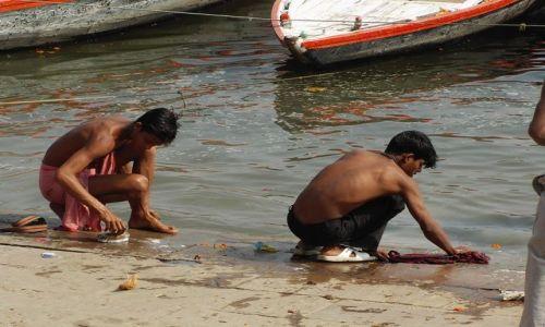 INDIE / Uttar Pradesh / Varanasi / pranie