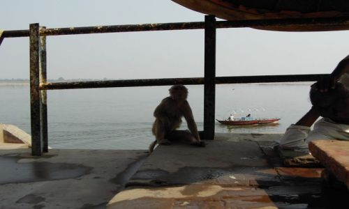 INDIE / Uttar Pradesh / Varanasi / w zgodzie