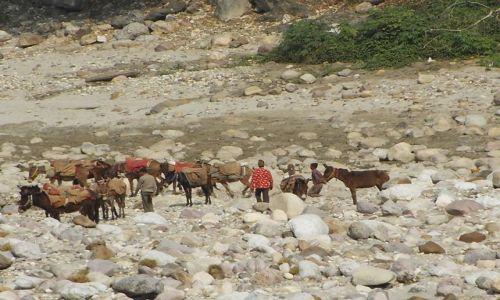 INDIE / Uttaranchal / Rishikesh / w korycie rzeki