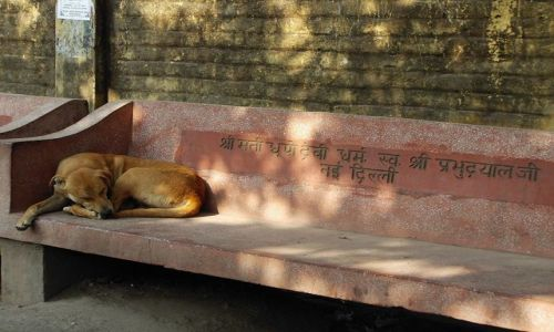 INDIE / Uttaranchal / Rishikesh / na ławce