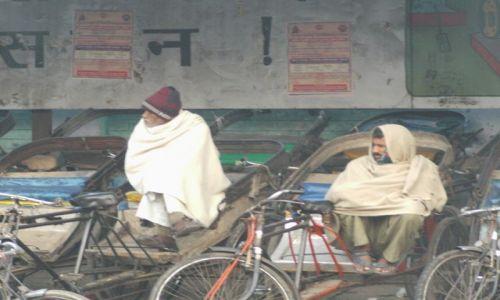 Zdjecie INDIE / Uttaranchal / Hardiwar / czekając na kli