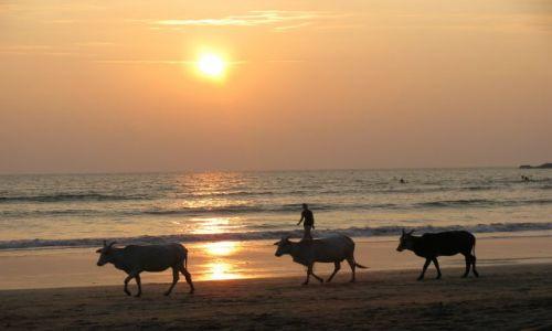 Zdjęcie INDIE / Goa / Palolem / Zachód slońca na Goa