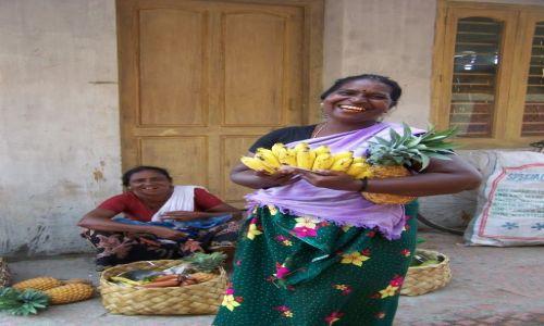 Zdjecie INDIE / Kerala / Kovalam / kto ma ochotę na banana??