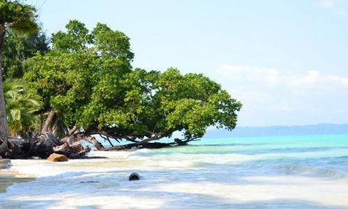 Zdjęcie INDIE / Andamany / Havelock Island / beach no 5