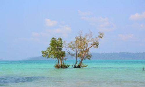 Zdjęcie INDIE / Andamany / Havelock Island / beach no 3