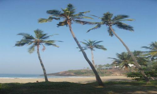Zdjęcie INDIE / Kerala / Kovalam / ... w cieniu ...
