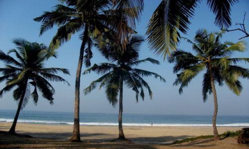 Zdjęcie INDIE / Kerala / Kovalam / ... horyzontalnie ...