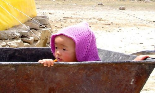 Zdjęcie INDIE / Ladakh / Między Manali a Delhi / Trekking w Himalajach