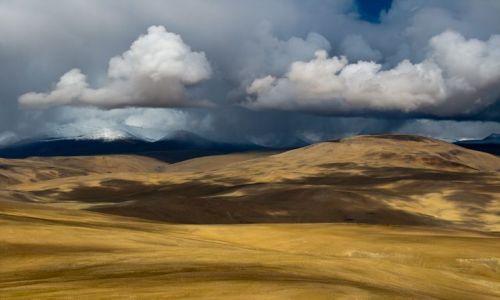 Zdjecie INDIE / Ladakh / Okolice jeziora TsoMoriri / Przed burzą