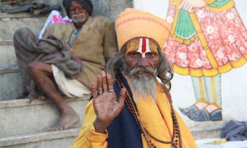 Zdjęcie INDIE / - / Udaipur / Sadhu