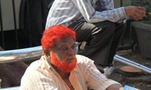 Zdjęcie INDIE / - / Bombaj / Przesadził