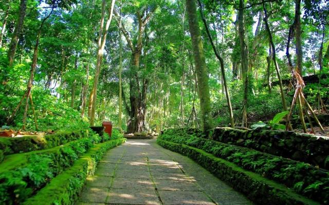 Zdjęcia: Ubud, Bali, Monkey Forest-Ubud(Bali), INDONEZJA