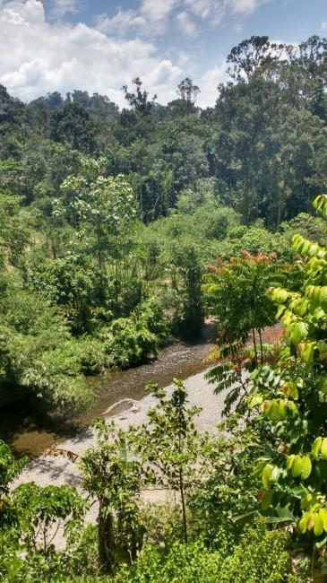 Zdjęcia: Bukit lawang, Sumatra, Czy może być piękniej?, INDONEZJA