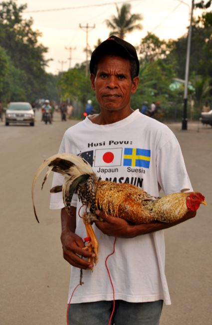 Zdjęcia: Baucau, Demokratyczna Republika Timor Leste, Pan z Kogutem (ulubieńcem Timorczyków) 2, INDONEZJA