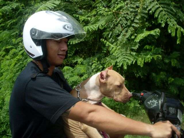 Zdjęcia: pólwysep Badung, Bali, ... ja i mój Pan...., INDONEZJA