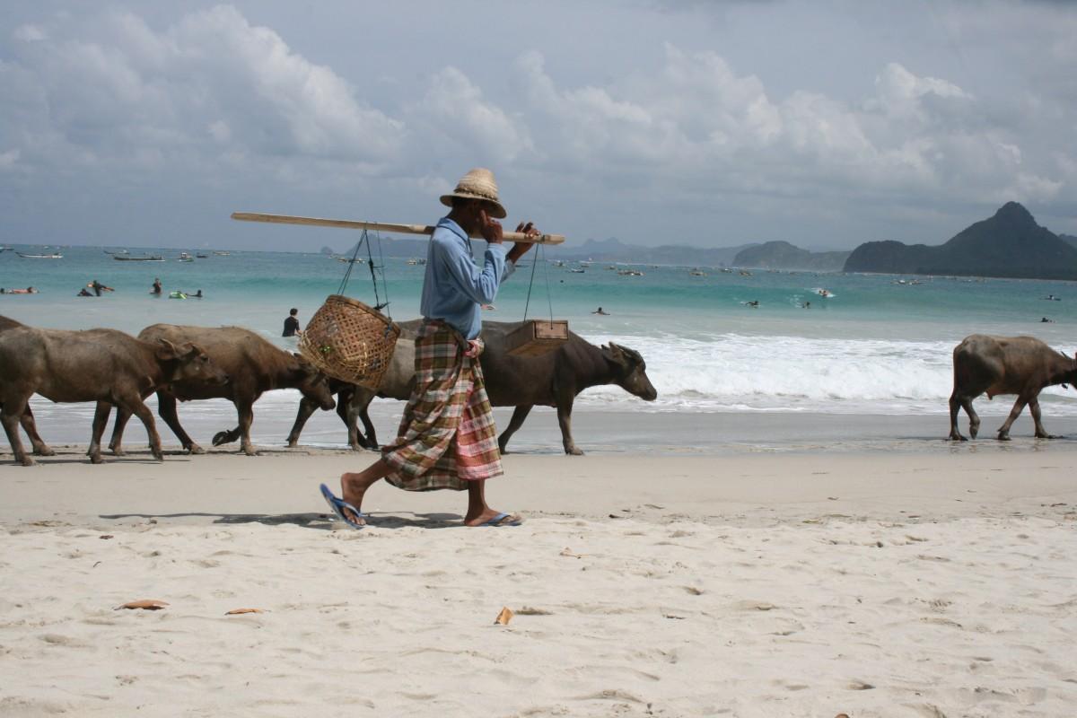 Zdjęcia: Lombok, Lombok, Plaża-Lombok, INDONEZJA