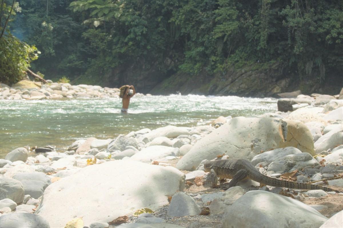 Zdjęcia: Bukit Lawang, Sumatra, Gunung Leuser, INDONEZJA