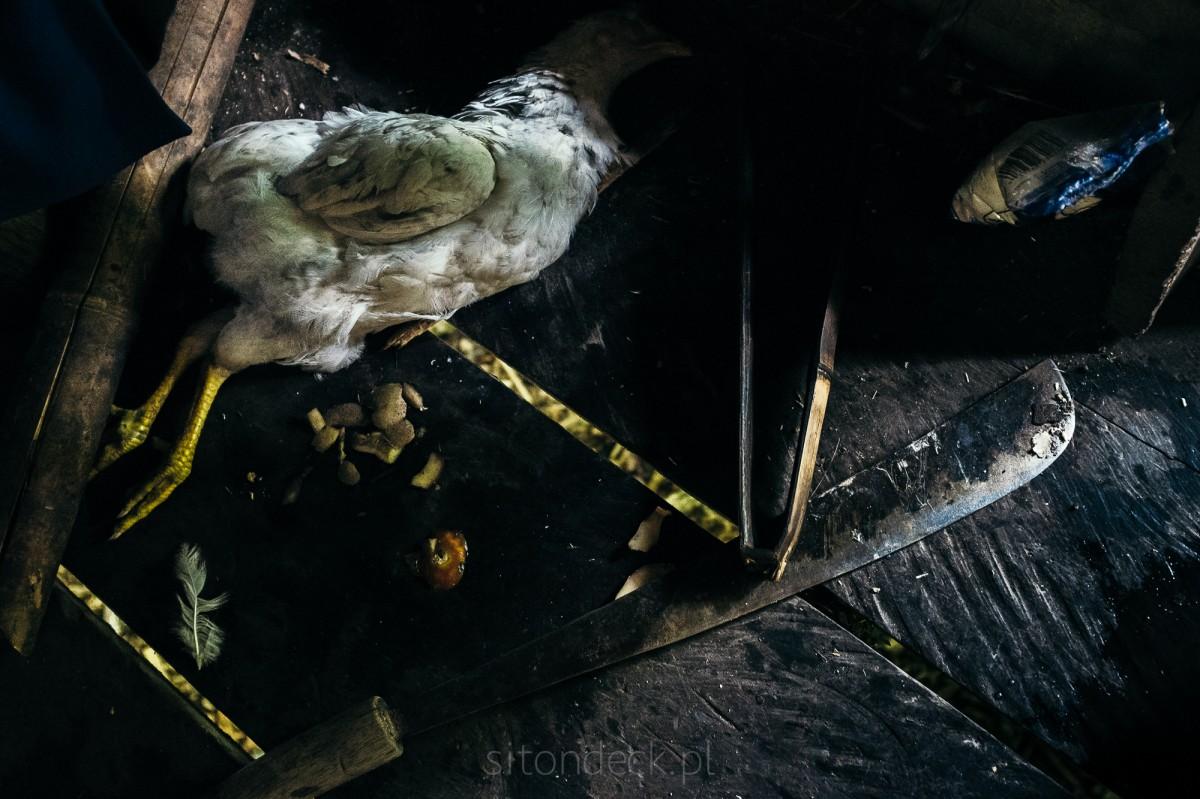 Zdjęcia: Siberut, Siberut, Mentawai life #5, INDONEZJA
